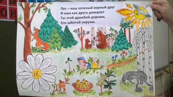 Приколы, международный день леса картинки плакаты