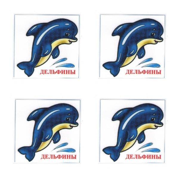всего, картинки для класса дельфины наш девиз нашла каждой букве