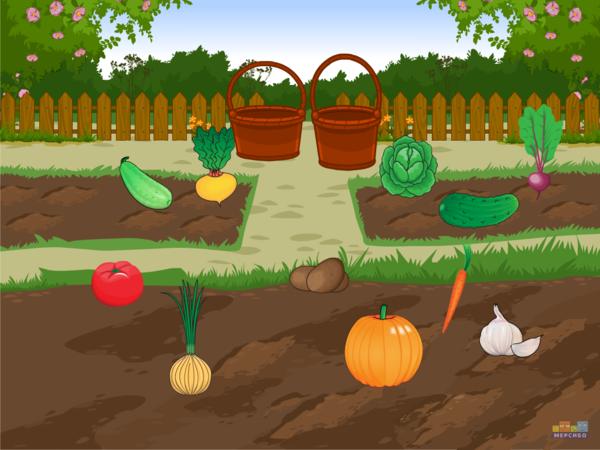 Овощи на огороде картинка для детей, прикольные
