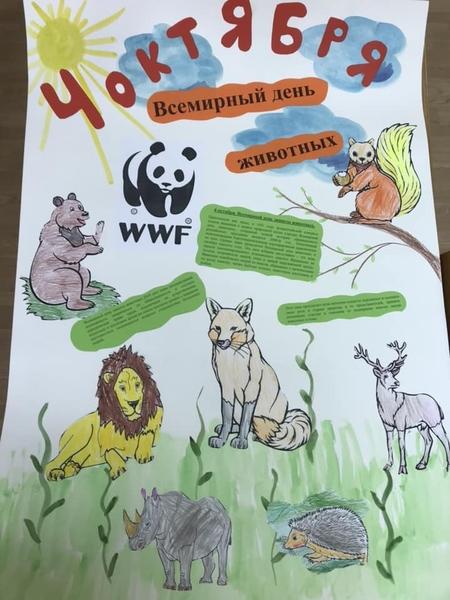 Картинки с раскрасками животные это