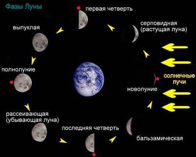ЛУННЫЙ КАЛЕНДАРЬ: что подскажет нам луна. Обсуждение на .