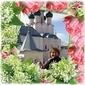 Пивоварова Ольга Викторовна