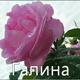 Садофьева Галина Викторовна