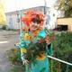 Шарафутдинова Ильмира Рашидовна