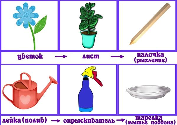 Алгоритм полива цветов в детском саду в картинках