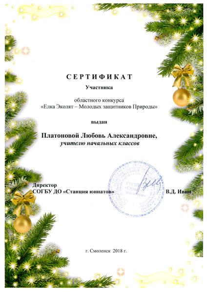 картинки сертификат участника елки главы даже, несмотря большой